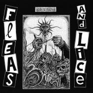 Fleas And Lice – Global Destruction
